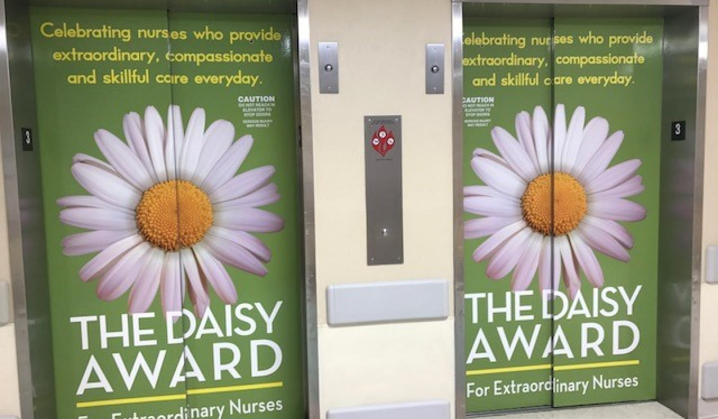 What Is The Daisy Foundation The Daisy Foundation